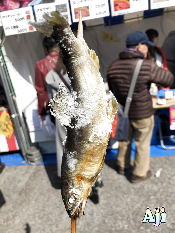 SAKANA & JAPAN FESTIVAL (魚ジャパンフェス) 2019 に行ってきた